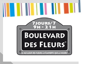 codes promo boulevard des fleurs le havre quartier saint vincent reducavenue. Black Bedroom Furniture Sets. Home Design Ideas