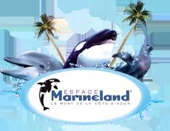 code promo marineland rencontre avec les dauphins Melun
